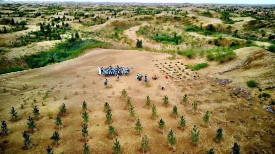 图为孩子们在库布其沙漠参观,认识各类沙漠植物。资料图片.jpg